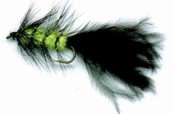 The Viva Woolly Bugger Fly