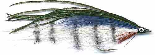 The barred White and Blue Lefty's Deceiver Saltwater fly fishing pattern