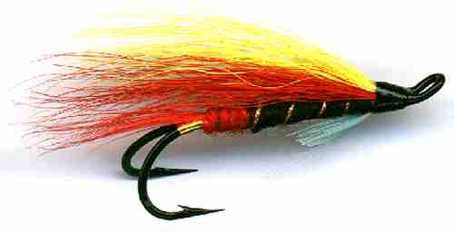 The Garry Dog Double Hook Salmon Fly