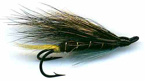 The Blue Charm Hairwing Double Hook Salmon Fly