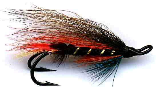 The Thunder and Lightning Double Hook Salmon Fly