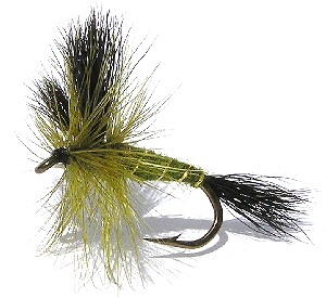 The Green Drake Wulff Dry Fly pattern