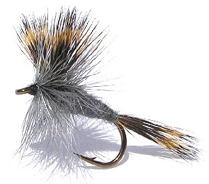 The Gray Wulff Dry Fly pattern