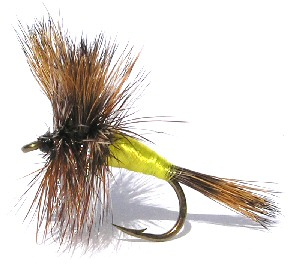 The Grizzly Wulff Dry Fly pattern