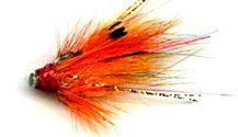 Ally's Shrimp 1/2 Inch Copper Salmon Tube fly pattern
