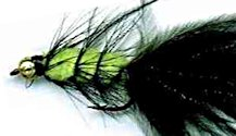 Beaded Viva Woolly Bugger fly pattern
