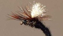 Black Klinkhammer Parachute Emerging Nymph fly pattern