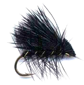 Black Elk Hair Caddis Fly pattern for trout fishing