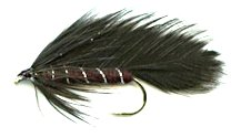 Black Matuka Streamer fly pattern