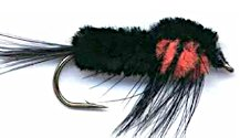 Black and Orange Montana Stonefly Nymph fly pattern
