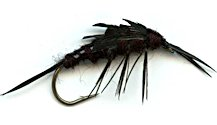 Black Stonefly Nymph fly pattern