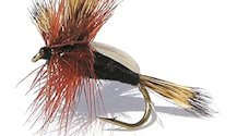 Black Humpy Rough Water Attractor Dry fly pattern