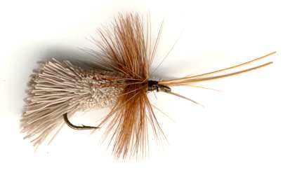 catch trout with a Goddard's Gray Caddis Dry Fly