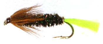 Stick Fly Caddis Nymph cased Caddis with peeping green pupa