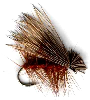 Dark Wing Brown Elk Hair Caddis Fly pattern for trout fishing