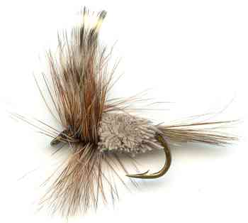 The Adam's Irresistible dry fly for trout fishing