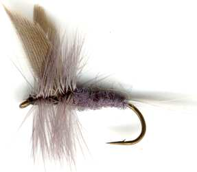 The Blue Dun Dry Fly pattern for Brown and Rainbow trout fishing