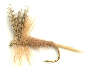 The Light Hendrickson Dry Fly for trout fishing