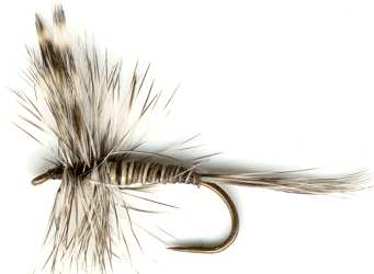 Mosquito Dry Fly pattern for trout fishing