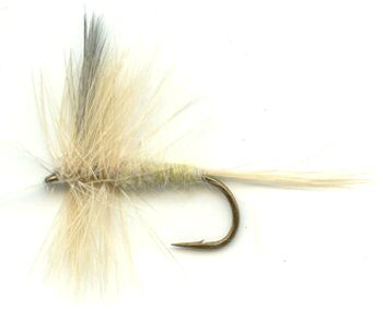 Pale Morning Dun Dry Fly pattern for trout fishing