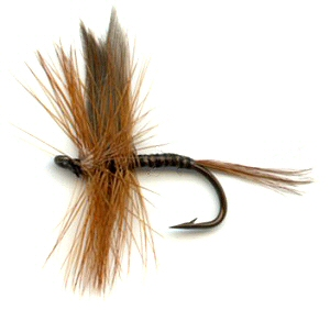Red Quill Dry Fly pattern for trout fishing