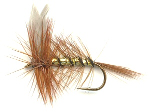 Wickham's Fancy Dry Fly for trout fishing