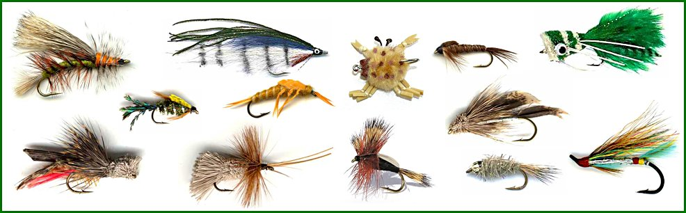 the english fly fishing shop index page, Fly Fishing Bait