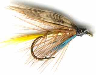 Gold Invicta Caddis Wet Fly Trout fishing pattern