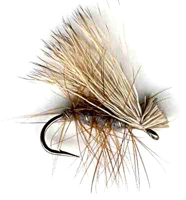 Gray Elk Hair Caddis (Sedge) Fly fishing pattern