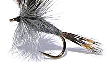 Gray Wulff Dry fly pattern