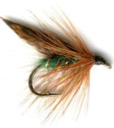 Green Peter Caddis Wet Fly