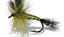 Green Wulff Dry fly pattern