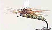 Greenwell's Glory Parachute Dry fly pattern