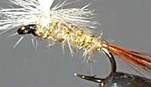 Gold Ribbed Hare's Ear Parachute Dry fly pattern