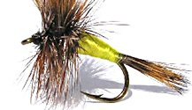Grizzly Wulff Dry fly pattern