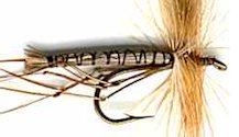 Light Brown Daddy Long Legs fly pattern
