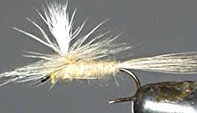 Light Cahill Parachute Dry fly pattern
