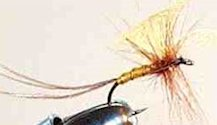 Light Cahill Mayfly Spinner fly pattern