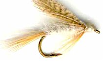 Light Cahill Wet fly pattern