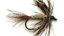 March Brown Soft Hackle fly pattern