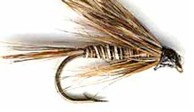 Mosquito Wet fly pattern