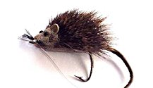 The Mouserat Bass Bug for largemouth bass fishing