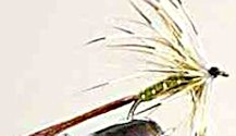 Olive French Partridge Mayfly Spinner fly pattern