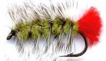 Olive Woolly Worm Caddis Nymph fly pattern