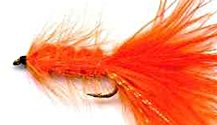 Orange Woolly Bugger fly pattern