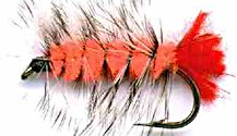 Orange Woolly Worm Caddis Nymph fly pattern