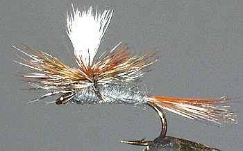 The Adams Parachute Dry Fly
