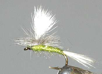 The Blue Winged Olive Parachute Dry Fly