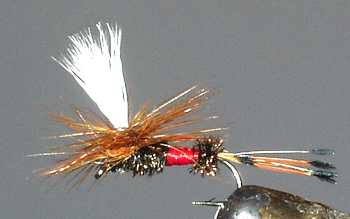 The Royal Coachman Parachute Dry Fly