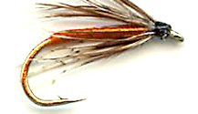 Partridge and Orange Soft Hackle fly pattern